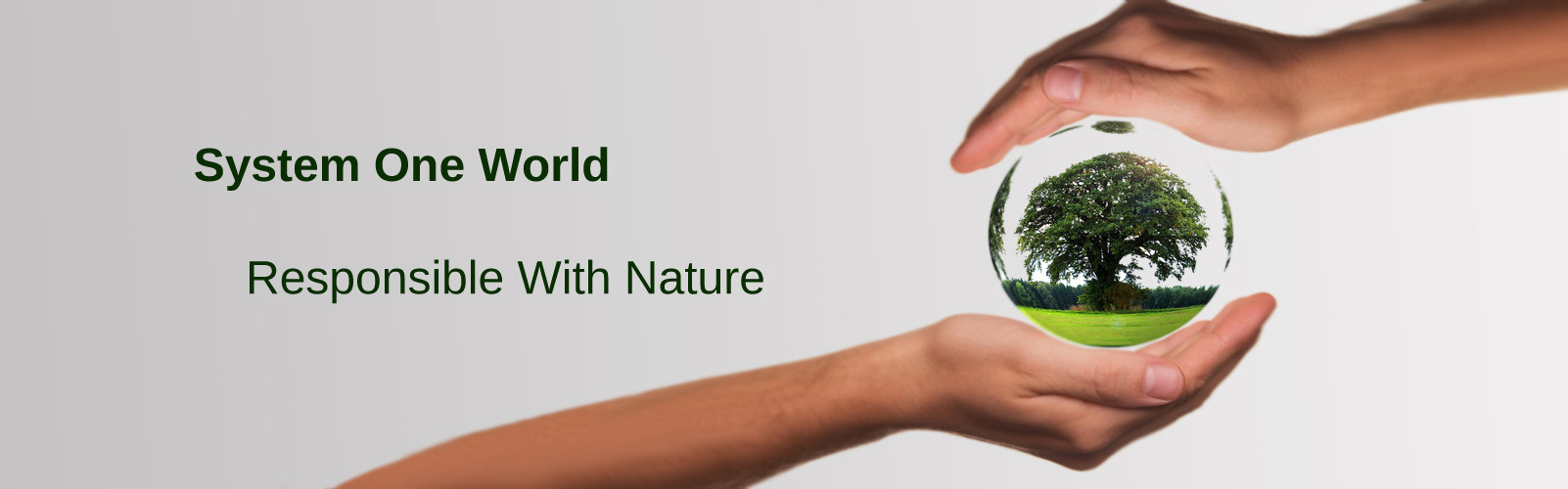 System One World responsible with nature
